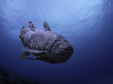 Digital Illustration of Coelacanth That Was Believed to Have Become Extinct