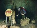 Scuba Diver in Car Wash Cenote  Aktun Ha  Tulum  Yucatan Peninsula  Mexico  Model Released