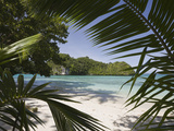 Sandy Beach in Rock Islands  Micronesia  Palau