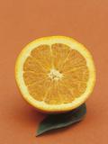 Sliced Orange and Leaf