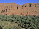Berber Village and Oasis  Near Todra Gorge  Morocco