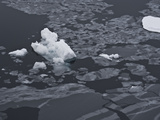 Grease Ice Formations Near Paulet Island  Ant Peninsula Grease Ice