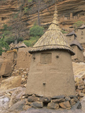 Traditional Dogon Granary  Mali