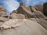 White Tank Monozonite Granite with a Aplite Dike  Joshua Tree National Park  California  USA