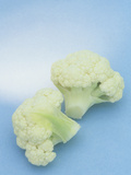 Cauliflower (Brassica Oleracea)