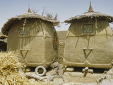 Granary Stores  Songhai Village Near Mopti  Mali