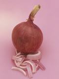 Red Onion and Onion Slices (Allium Cepa)