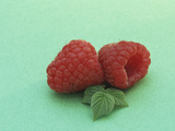 Raspberry Fruits and Leaves