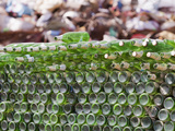 Glass Bottles Collected for Recycling