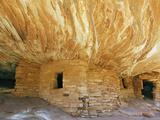 Anasazi or Ancient Puebloan Cliff Dwelling in South Mule Canyon  Cedar Mesa