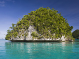 Small Island Off Palau  Micronesia  with a Wave-Eroded Base