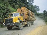 Truck Carrying Large Logs from the Rainforest  Gabon