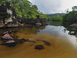 River Flowing Through the Rainforest in Masoala National Park  Madagascar