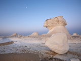 Cone Formations of Limestone in White Desert National Park  Libyan Desert  Egypt