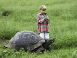 A Young Boy Prepares to Photograph a Galapagos Giant Tortoise (Geochelone Elephantopus)