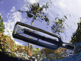 Underwater View of a Message in a Bottle with Tropical Foliage Seen Through the Rippled Surface