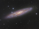 NGC 253 the Sculptor Galaxy NGC 253 Is a Member of the Sculptor Group of Galaxies
