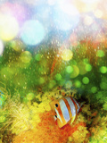 A Beautiful Tropical Coral Reef Fish Surrounded by Rainbow Colored Light