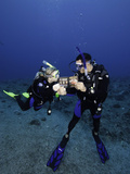 Divers on a Reef Reading a Fish Identification Book Underwater  Palau  Micronesia