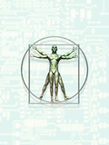 Illustration of Leonardo Da Vinci&#39;s Vitruvian