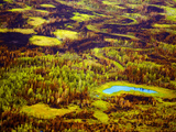 Early Fall after the Summers of the Nenana Forest Fire