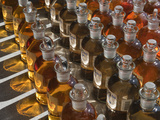 Sample Bottles Filled with River Water from the Kolyma River Watershed in the Siberian Arctic