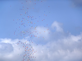 Multicolored Balloons in Sky