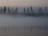 Radiation Fog Forms on Shuchi Lake in the Siberian