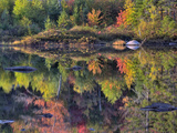 Shoreline Reflection  Lily Pond  White Mountain National Forest  New Hampshire