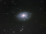 NGC 7793 Spiral Galaxy in Sculptor NGC 7793