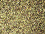 Dried Thyme Leaves for Use as a Spice or Flavoring (Thymus Vulgaris)