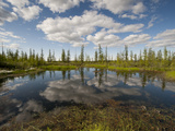 A Thermokarst Lake  Formed by Ice-Rich Permafrost Soil Thawing  Reflects Cumulus Clouds