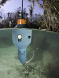 A Floating Transmitter That Sends a Signal to Track the Threatened Florida Manatee
