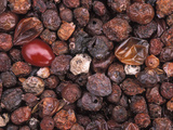 Dried Cranberries  Cape Cod Cranberries are Thought to Have Many Health Benefits