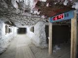 Digital Readout Shows the Temperature in a Tunnel under the Melnikov Permafrost Institute