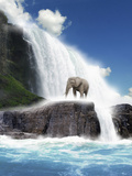 An African Elephant Standing on Rocks Beside a Big Beautiful Waterfall Against a Bright Blue Sky