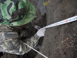 A Russian Researcher Takes a Soil Profile from an Ice Wedge at the Exposed Riverbank