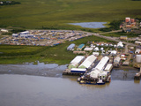 Peter Pan Seafood Company on the Shores of the Nushagak River  Dillingham  Bristol Bay  Alaska