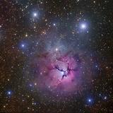 The Trifid Nebulin Sagittarius (M20  Barnard 85  NGC 6514)