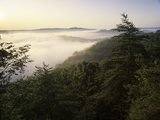Foggy Morning from Auxier Ridge  Red River Gorge Geological Area  Daniel Boone National Forest