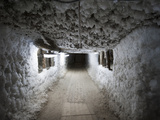 Ice Grows on the Walls of a Tunnel under the Melnikov Permafrost Institute  Sakha Republic