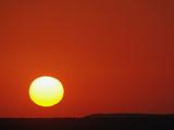 Sunset  Masai Mara Game Reserve  Kenya  Africa