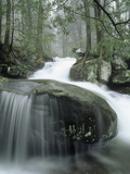 Leconte Creek Cascading over Boulders after Heavy Rains  Great Smoky Mountains National Park
