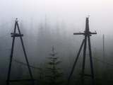 Old Power Lines in the Fog  Cherskiy  Sakha Republic  Siberia  Yakutia  Russia
