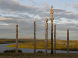 N Totems Stand on a Ridge Above the Panteleikha River  a Tributary of the Kolyma River