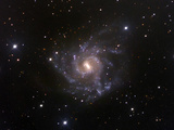 NGC 7424  Spiral Galaxy in Grus