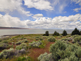 Lake Abert  a Remnant of Pleistocene Lake Chewaucan