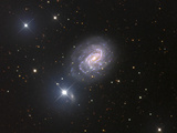 NGC 1187  Spiral Galaxy in Eridanus