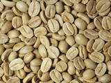 Bolivian Green Coffee Beans Unroasted