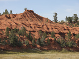 Devils Tower National Monument  Red Sandstone  Spearfish Formation  Wyoming  USA